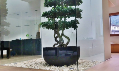 Arbol artificial Bonsai Ficus XXL